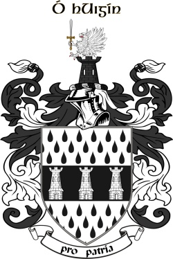 HIGGINS family crest
